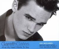 Cover Gareth Gates - What My Heart Wants To Say