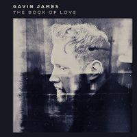 The book of love (live) - gavin james