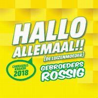 Cover Gebroeders Rossig - Hallo allemaal!! (De Luizenmoeder)