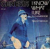 Cover Genesis - I Know What I Like (In Your Wardrobe)