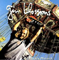 Cover Gin Blossoms - Allison Road