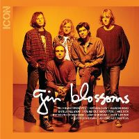 Cover Gin Blossoms - Icon