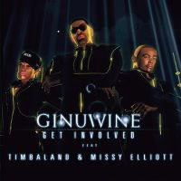Cover Ginuwine feat. Timbaland & Missy Elliott - Get Involved