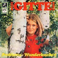 Cover Gitte - Probleme