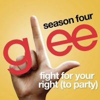 Cover Glee Cast - Fight For Your Right (To Party)