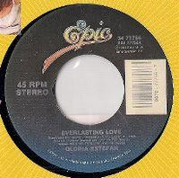 Cover Gloria Estefan - Everlasting Love