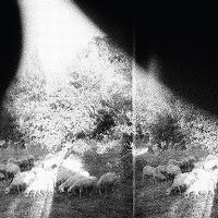 Cover Godspeed You! Black Emperor - Asunder, Sweet And Other Distress