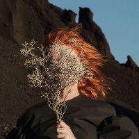 Cover Goldfrapp - Silver Eye
