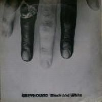 Cover Greyhound - Black And White
