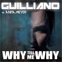 Cover Guilliano vs. Anita Meyer - Why Tell Me Why