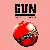 Cover Gun - Favourite Pleasures