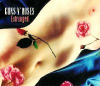 Cover Guns N' Roses - Estranged