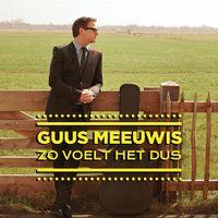 Cover Guus Meeuwis - Zo voelt het dus