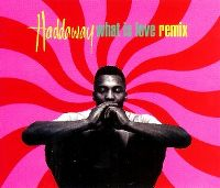 Cover Haddaway - What Is Love - Remix