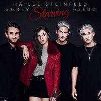 Cover Hailee Steinfeld & Grey feat. Zedd - Starving