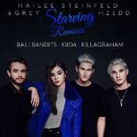 Cover Hailee Steinfeld & Grey feat. Zedd - Starving