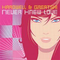 Cover Hardwell & Greatski - Never Knew Love
