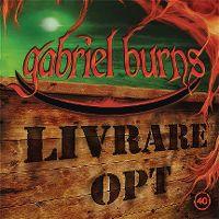 Cover Hörspiel / Gabriel Burns - 40. Livrare Opt