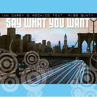 Cover Ian Carey & Mochico feat. Miss Bunty - Say What You Want
