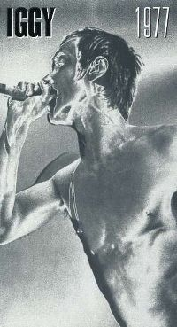 Cover Iggy Pop - Iggy 1977