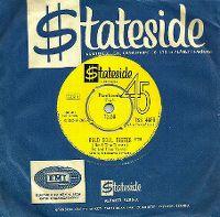 Cover Ike & Tina Turner - Bold Soul Sister