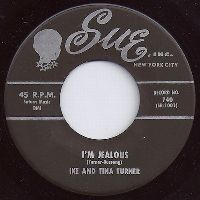 Cover Ike & Tina Turner - I'm Jealous