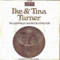 Cover Ike & Tina Turner - Too Hot To Hold