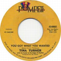 Cover Ike & Tina Turner - You Got What You Wanted