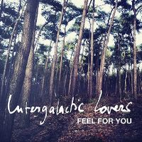 Cover Intergalactic Lovers - Feel For You