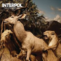 Cover Interpol - Our Love To Admire