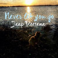 Cover Jaap Reesema - Never Let You Go