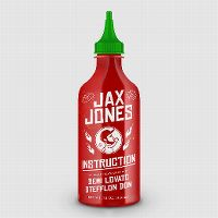 Cover Jax Jones feat. Demi Lovato & Stefflon Don - Instruction