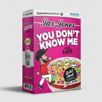 Cover Jax Jones feat. Raye - You Don't Know Me