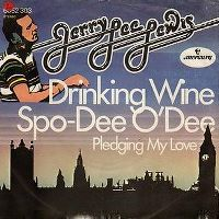 Cover Jerry Lee Lewis - Drinkin' Wine Spo-Dee O'Dee