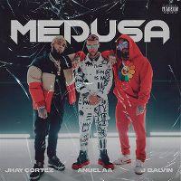 Cover Jhay Cortez / Anuel AA / J Balvin - Medusa