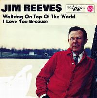 Cover Jim Reeves - I Love You Because