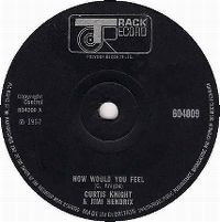 Cover Jimi Hendrix & Curtis Knight - How Would You Feel