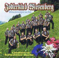 Cover Jodlerklub Wiesenberg - Bluämäpracht