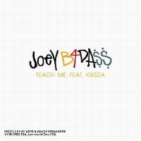 Cover Joey Bada$$ feat. Kiesza - Teach Me