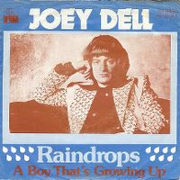 Cover Joey Dell - Raindrops