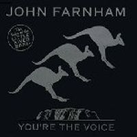 Cover John Farnham - You're The Voice