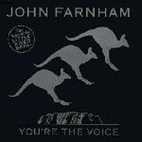 Cover John Farnham - You're The Voice