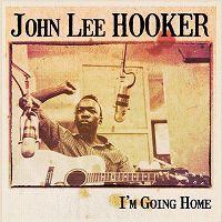 Cover John Lee Hooker - I'm Going Home