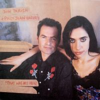 Cover John Parish + Polly Jean Harvey - That Was My Veil