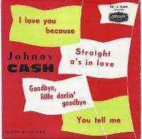 Cover Johnny Cash - I Love You Because