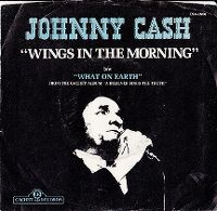 Cover Johnny Cash - Wings In The Morning
