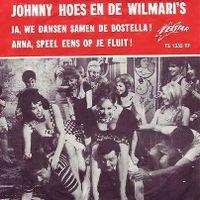 Cover Johnny Hoes & De Wilmari's - Ja, we dansen samen de bostella!