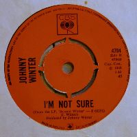 Cover Johnny Winter - I'm Not Sure