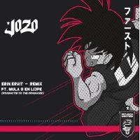 Cover Jozo feat. Mula B & Lijpe - Erin eruit - Remix