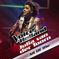 Cover Julia van der Toorn - All Of Me